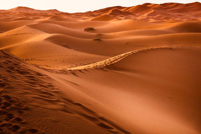 Orange and brown desert sandscape representing the feeling of your child's dry mouth